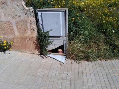 Foto: Policia Local Algaida